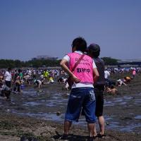 金沢八景、海の公園 潮干狩り その2 (京急800形リバイバル塗装にでも出会う、ドレミファで帰る。)