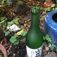 464 ボトルネック