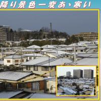 この冬最低気温 「雪が降り景色一変あゝ寒い」