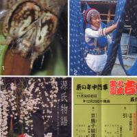 歌舞伎と私:海老蔵のフアンになりました!