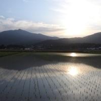 田んぼからの筑波山の夕暮れ