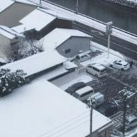 闘病日記2/11(土)・・・コンビニ