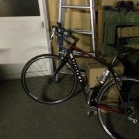 自転車が来たよ。