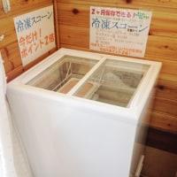 店では「冷凍スコーン」の冷凍庫を置きました!