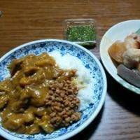 2月20日(月)チキン納豆カレー