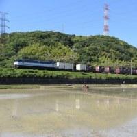 最後の〆は夙川で75レを(5月28日撮影)