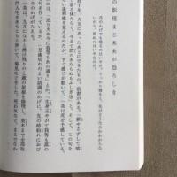 金子兜太の句による評伝 小林一茶を読む