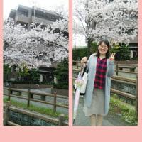 桜満開の日に始まりました。