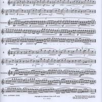 モイーズの「24の旋律的練習曲と変奏(初級)」をやり始める
