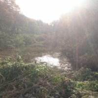 平山大橋~北生実上宿~大百池公園