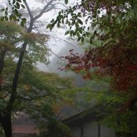 北広島町 古保利薬師の霧 2016秋