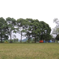 ちゃっかり近場でうっかり愉しく@橘ふれあい公園キャンプ