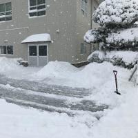 大雪です!!