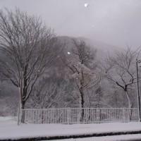 きれいな雪景色♪