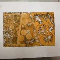 奥深い色に見える銅版画の「黒」への誘い・・・そして、更に募る「色」への思い・・・。