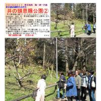 散策 「東京南西部-260」 井の頭恩賜公園②