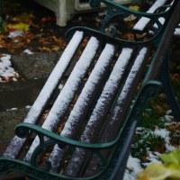 なんだか雪です!!
