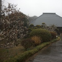 御宿の蕎麦屋「幸七」に行ってきた!