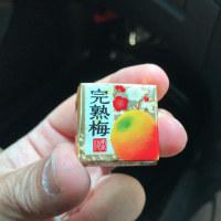 チロル「完熟梅」を食べました。