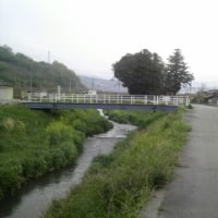 ウォーキング(8km)