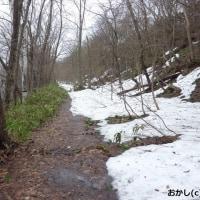 私の散歩道は 「残雪」で 歩けません !
