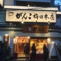 がんこ梅田本店