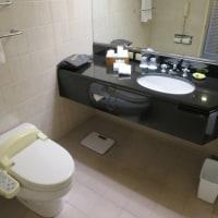 ヨコハマ グランド インターコンチネンタル ホテル 47 (神奈川県横浜市西区)