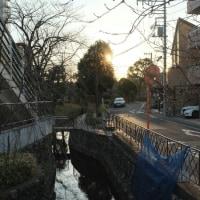 きょうのテルマエ 江戸川区 宝来湯
