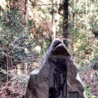 木枯に 岩吹きとがる 杉間かな   芭蕉