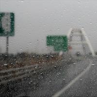 昨日とは打って変って雨
