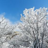 久住中岳・雪景色に満足(H29.2.25)