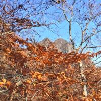 Mt.Myougi
