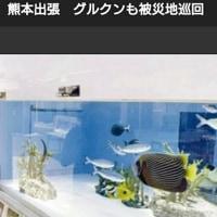 美ら海出張水族館