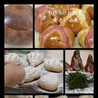 6月13日パンのお勉強