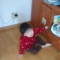 コブログ2012.04.20