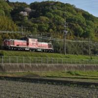 「朝日に匂う山桜花」とDD51単機