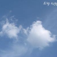 今日のそら ・・・ 8/19 (水)
