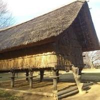 大塚・歳勝土遺跡:弥生時代の遺跡