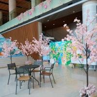 四川飯店のランチ