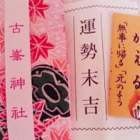 今年のおみくじ( ・ノω・)コッソリ