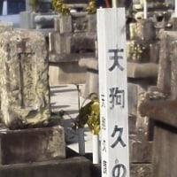 強風の中を井戸寺へ