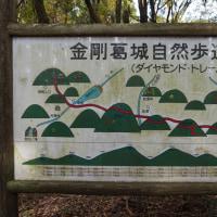 31日目 大阪 岩湧山
