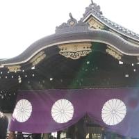 初詣は靖国神社へ b