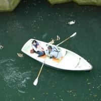 ボートのお客さんは外国の方ばかりでした