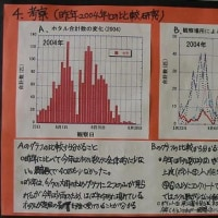 小学生の研究発表