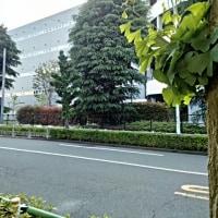 05/19 137連勤目の日雇いバイトオシャマイ