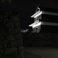 上田城 ライトアップ