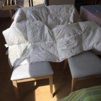 朝ランとお洗濯