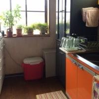 キッチンの模様替え…というより、DIYだ!