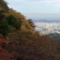 秋の高尾山ハイキング